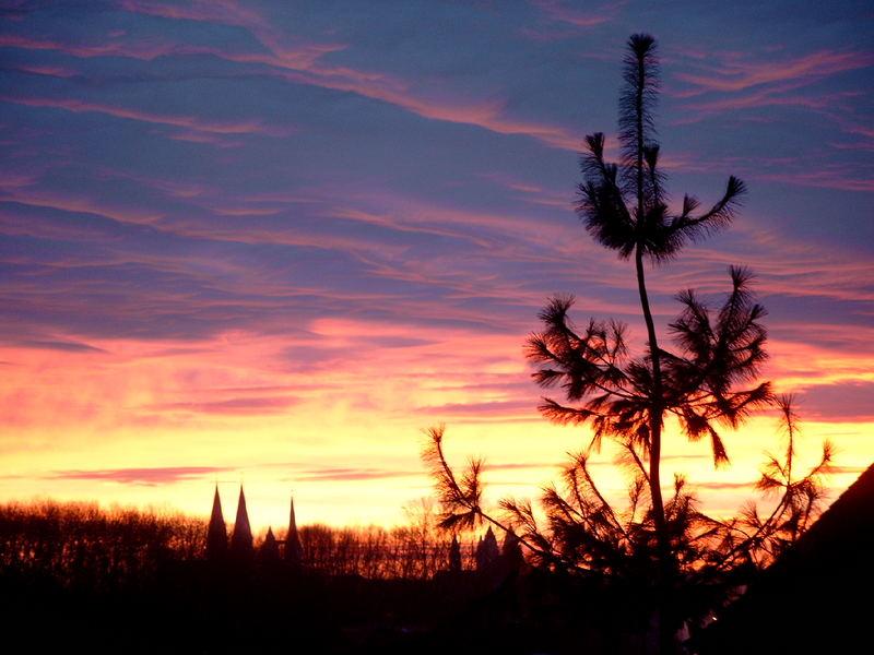 Sonnenaufgang Halberstadt