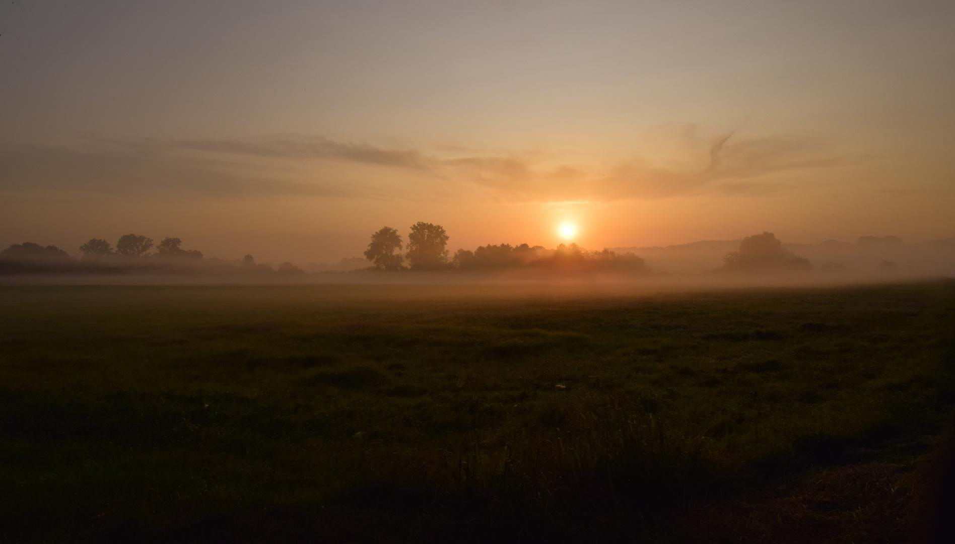 Sonnenaufgang im Badner Land