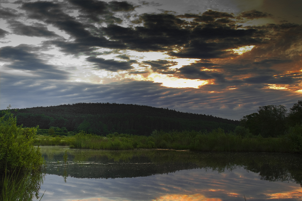 Sonnenaufgang im Biotop