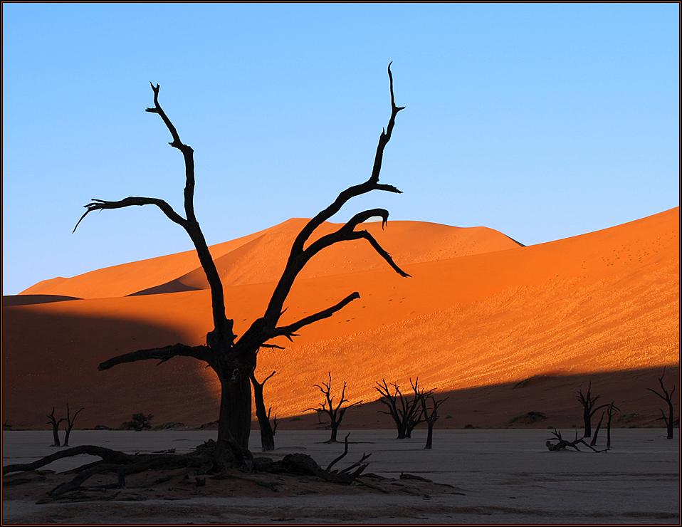 Sonnenaufgang im Deadvlei