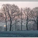 Sonnenaufgang im Dezember (Reload)