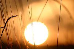Sonnenaufgang im Fichtelgebirge