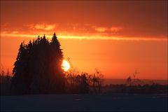 Sonnenaufgang im Großen Moor