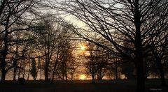 Sonnenaufgang im Hörle-Park in Konstanz