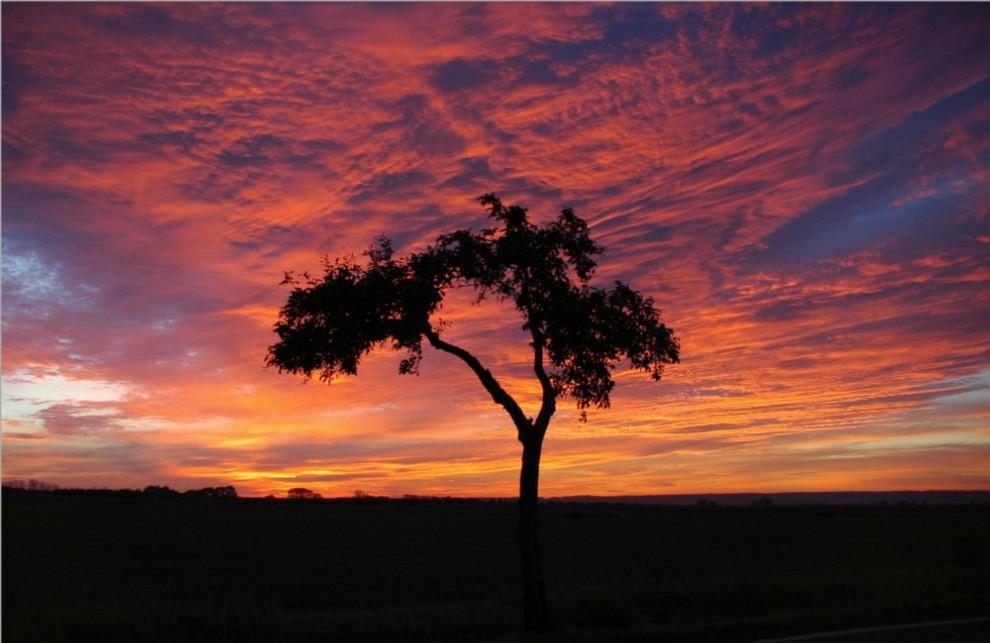 Sonnenaufgang im Mansfelder Land