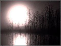 Sonnenaufgang im Moor.....