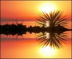 Sonnenaufgang im Morgendunst
