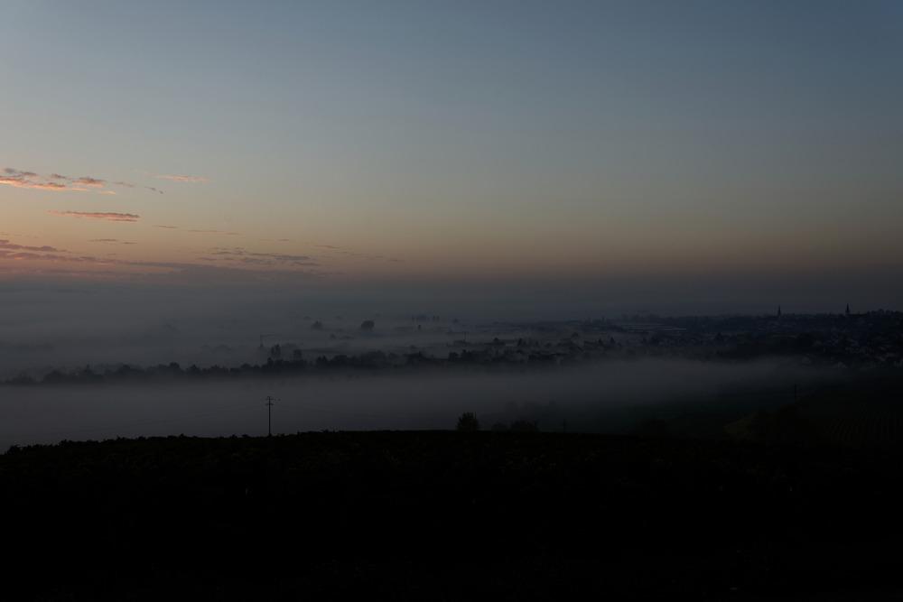Sonnenaufgang im Nebel über Langenlonsheim