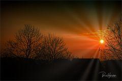 Sonnenaufgang im November ....