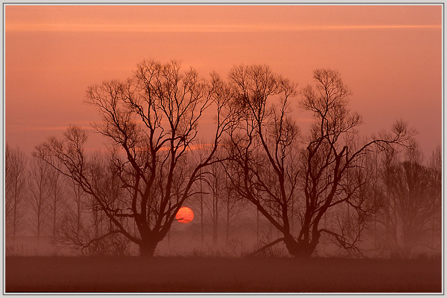 Sonnenaufgang im Ochsenbruch