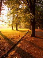 sonnenaufgang im park