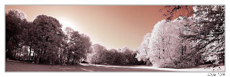 Sonnenaufgang im Park IR