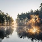 Sonnenaufgang im Schwenninger Moos