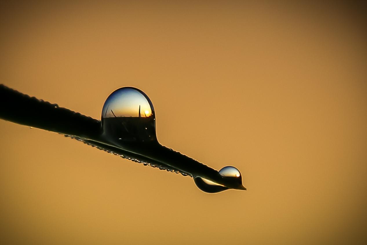 Sonnenaufgang im Wassertropfen