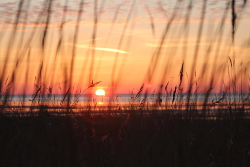 Sonnenaufgang im Wattenmeer
