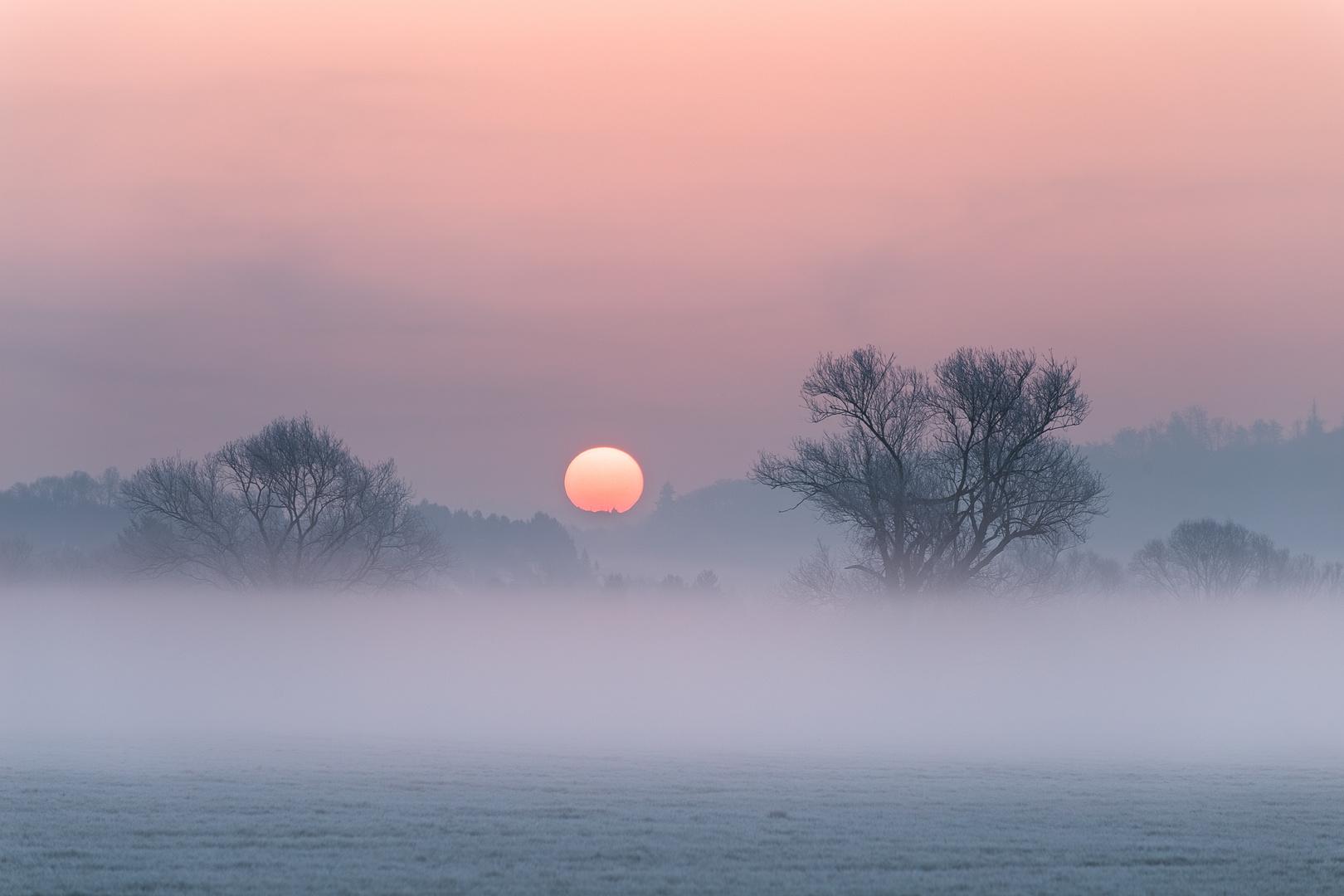 Sonnenaufgang in den Lahn Auen