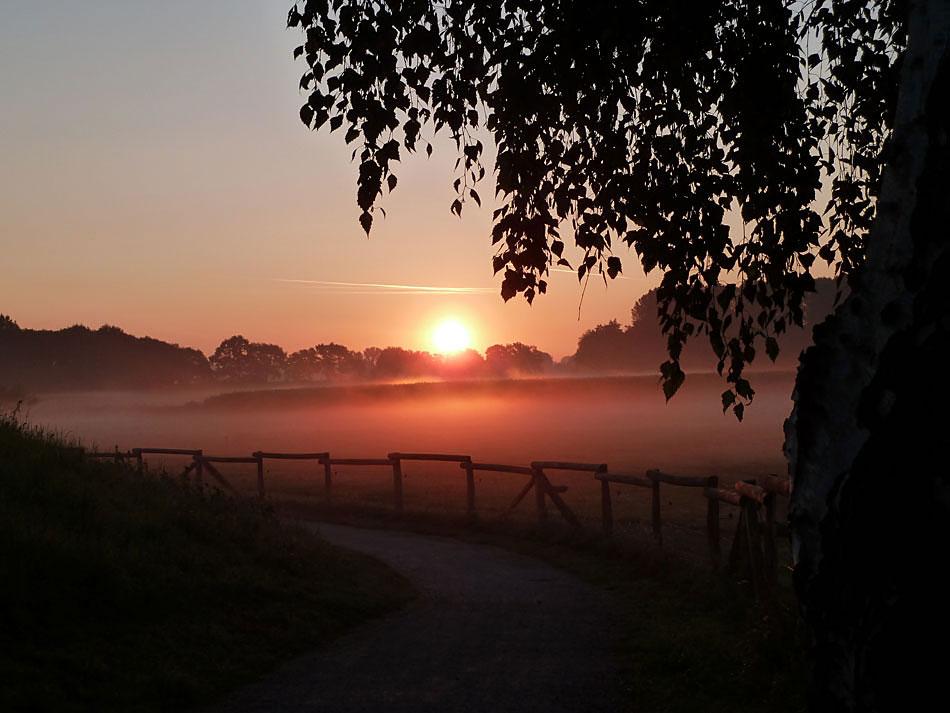 Sonnenaufgang in den Steverauen