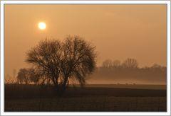 Sonnenaufgang in der bayrischen Savanne