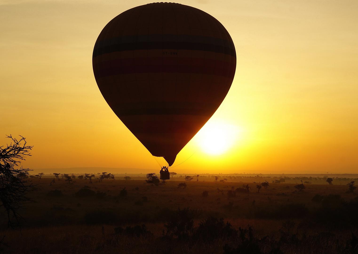 Sonnenaufgang in der Massai Mara