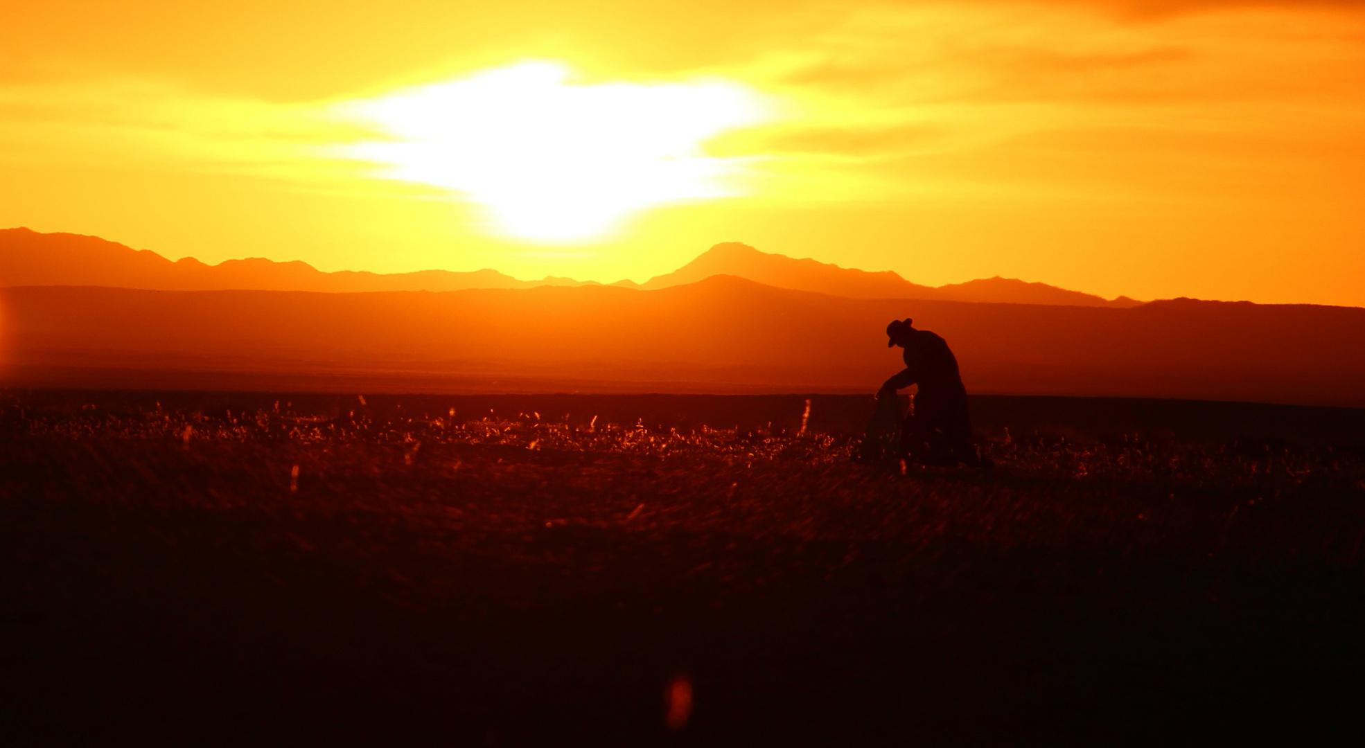Sonnenaufgang in der Mongolei