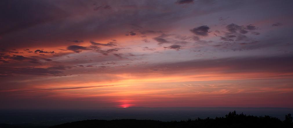 Sonnenaufgang in der Rheinebene