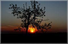 Sonnenaufgang in NRW.