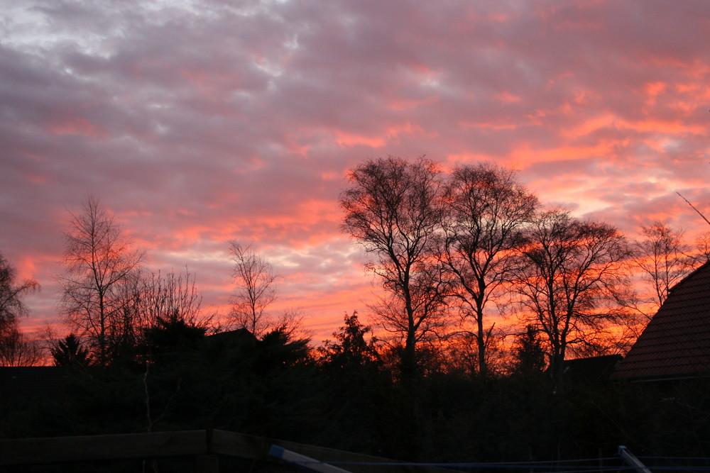 Sonnenaufgang in Oldenburg Krusenbusch