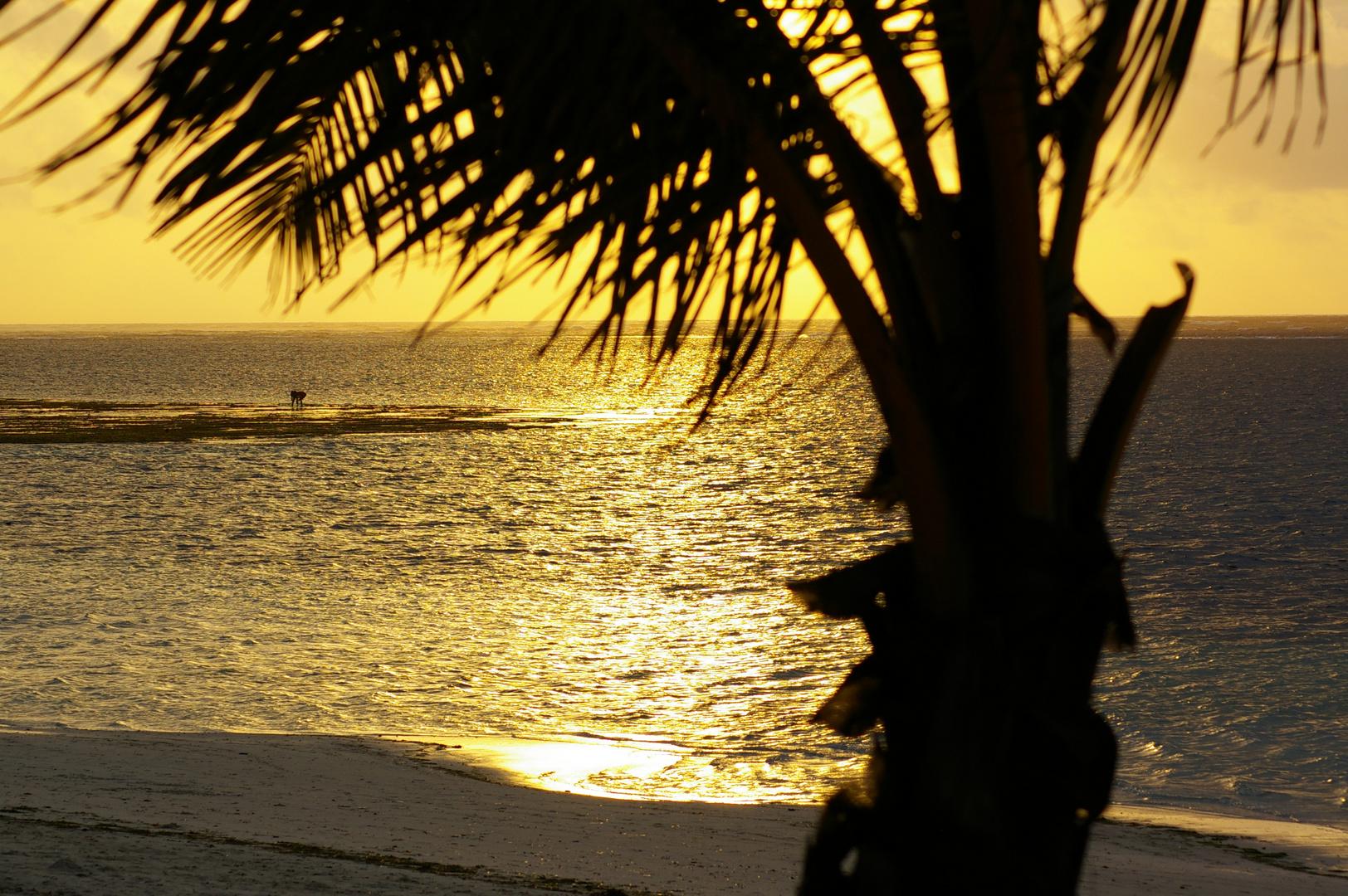 Sonnenaufgang in Ostafrika