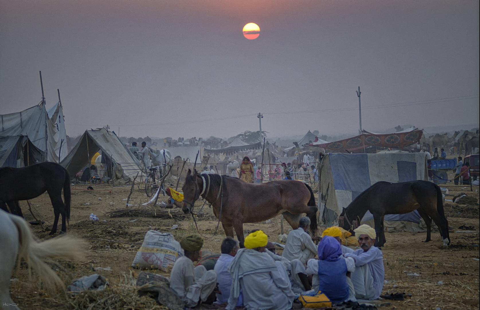 Sonnenaufgang in Pushkar