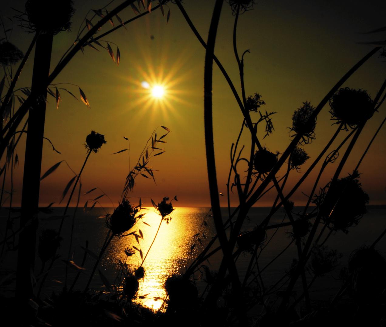 Sonnenaufgang in Sardinien III