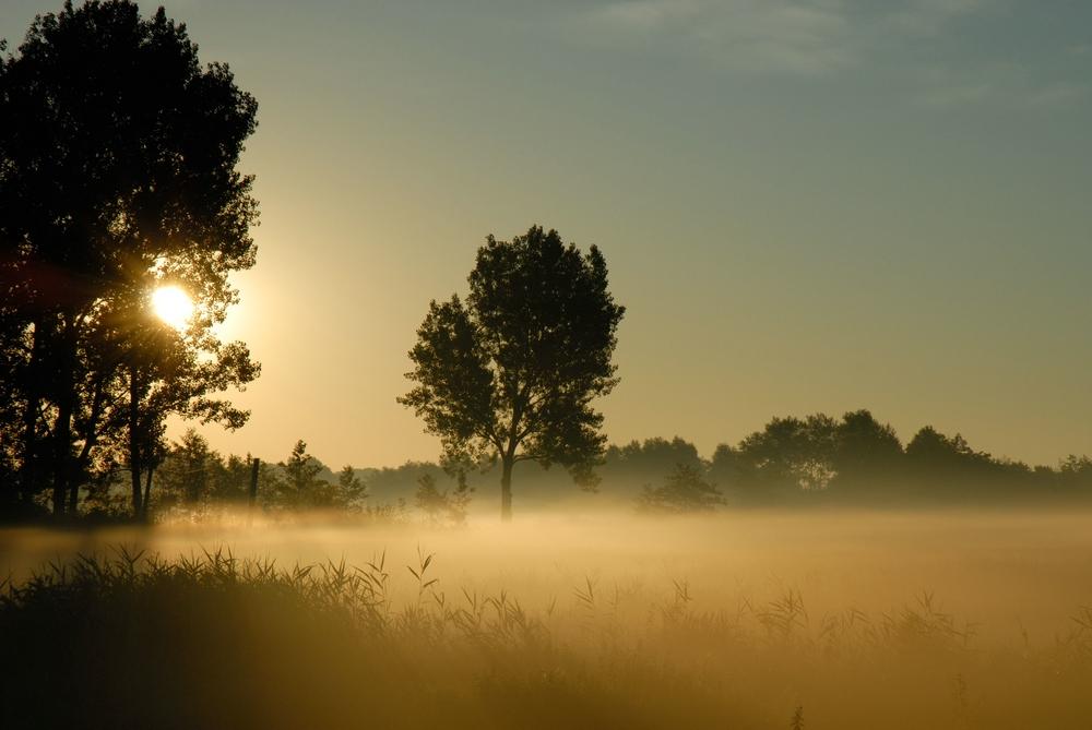 Sonnenaufgang in Tönning
