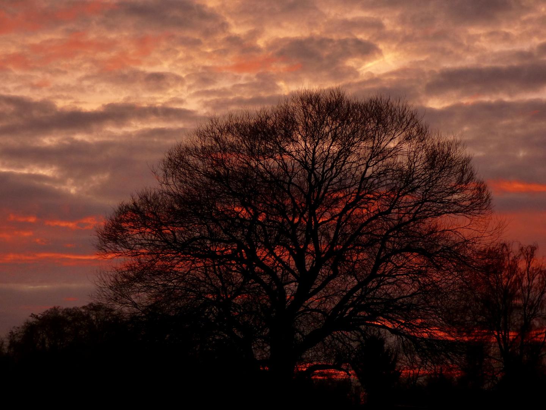 Sonnenaufgang mit schauriger Stimmung