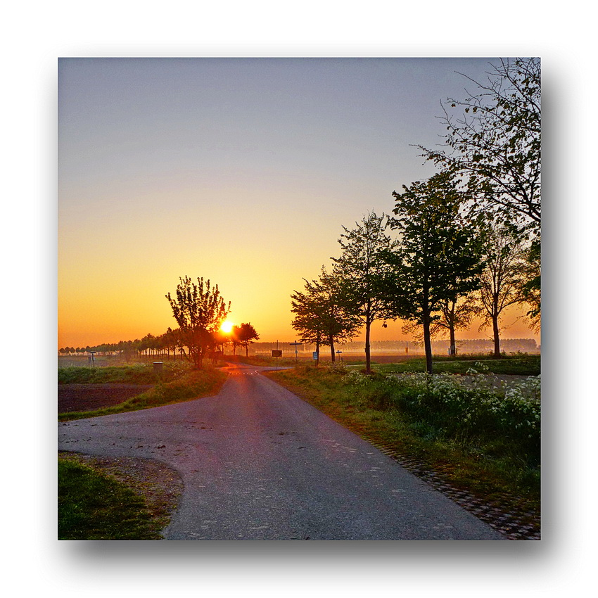 Sonnenaufgang Oranjedijk 26.04, 2014
