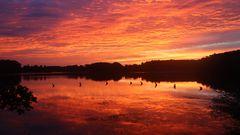 Sonnenaufgang über dem Rothsee