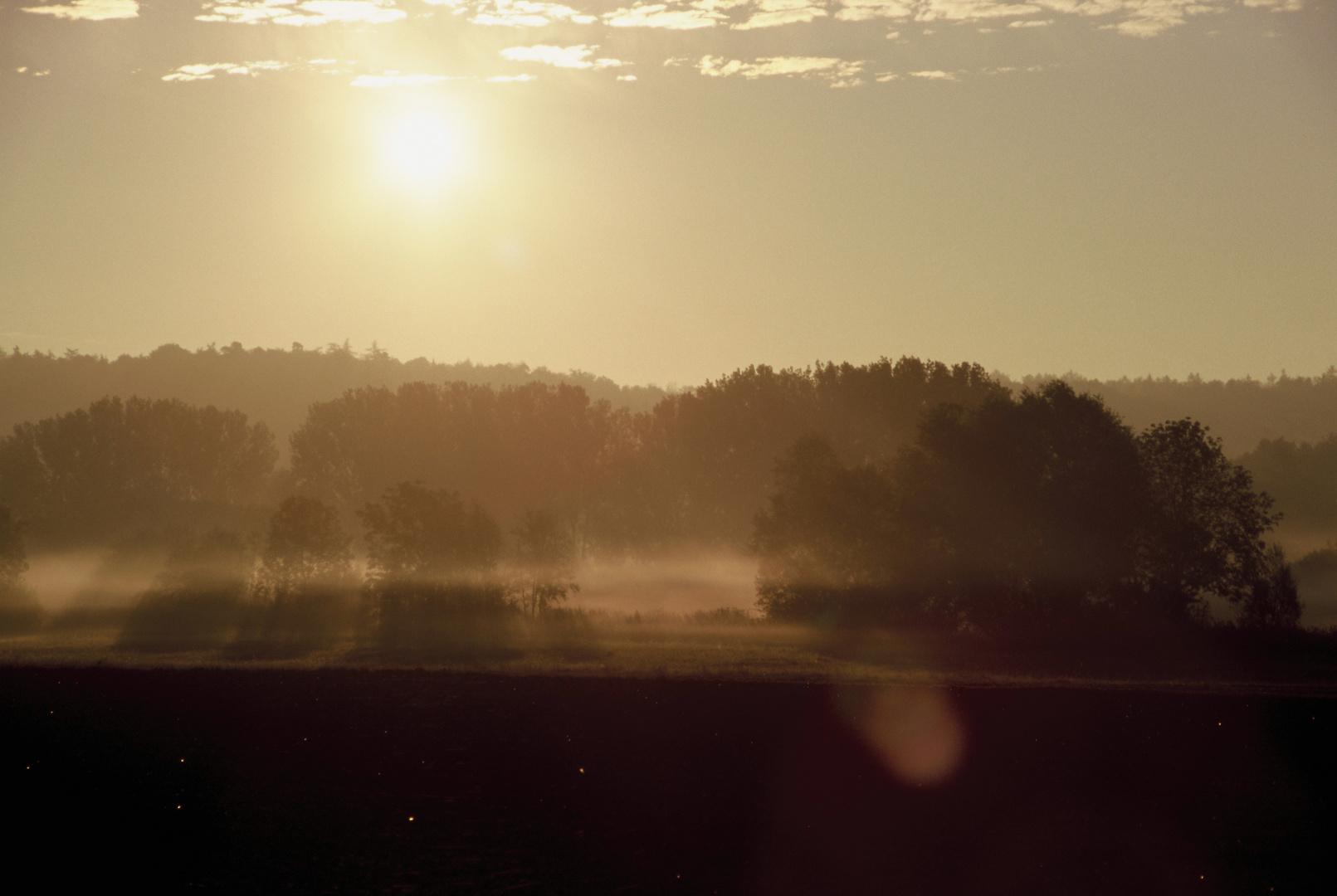 Sonnenaufgang über dem Schönbuch