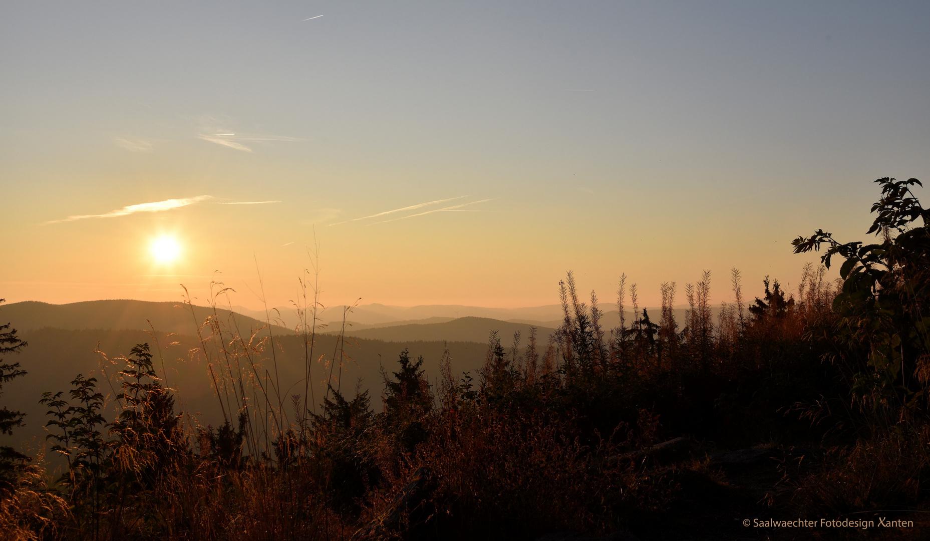 Sonnenaufgang über dem spätsommerlichen Schwarzwald