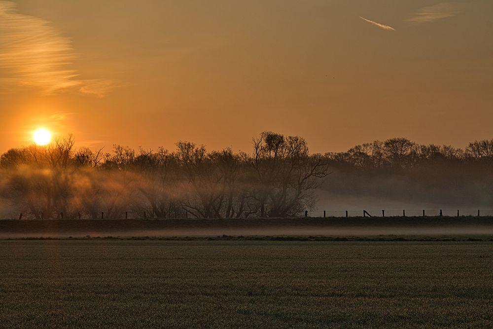 Sonnenaufgang über den Ruhrauen