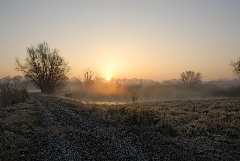 Sonnenaufgang über der Oder