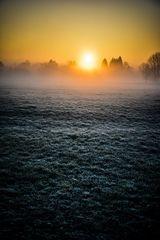 Sonnenaufgang über Nachbar's Wiese (Chiemsee)
