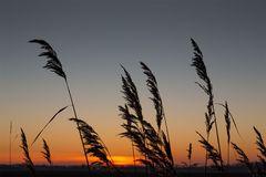 ... Sonnenaufgang über Zeeland ...