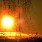 Sonnenaufgang vor meinem Küchenfenster