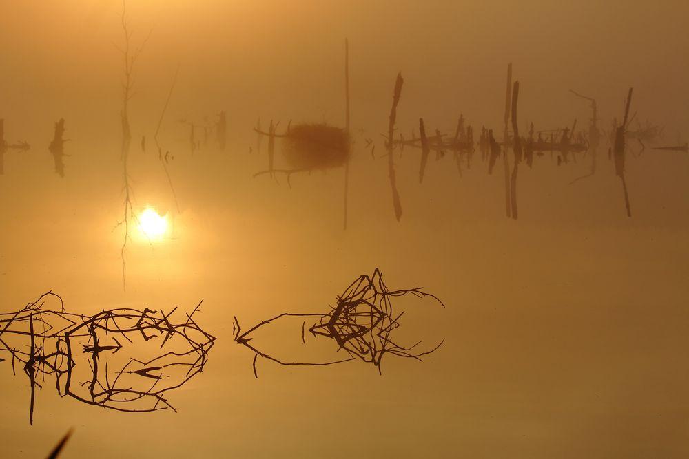Sonnenaufgang zum Spiegeltag