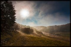 Sonnenaufgang zwischen nebelfeldern