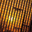 Sonnenbelichtete Fensterfront