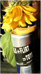 Sonnenblume einmal anders :)