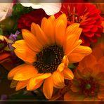 Sonnenblume - herbstlich arrangiert mit Dahlien