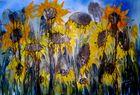 Sonnenblumen 2013