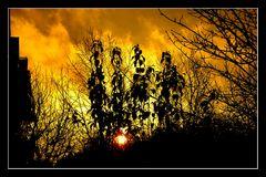 Sonnenbrand im Dezember