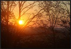 ...SonnenFänger...