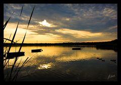 Sonnenfinsternis über'n Rangsdorfer See...